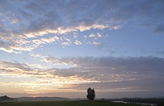 Am Treidelweg zur Treene; Bergenhusen, Stapelholm (64) (Chironius) Tags: stapelholm bergenhusen schleswigholstein deutschland germany allemagne alemania germania германия niemcy morgendämmerung sonnenaufgang morgengrauen утро morgen morning dawn sunrise matin aube mattina alba ochtend dageraad zonsopgang рассвет восходсолнца amanecer morgens dämmerung himmel sky ciel cielo hemel небо gökyüzü wolken clouds wolke nube nuvole nuage облака baumsilhouette baum bäume tree trees arbre дерево árbol arbres деревья árboles albero árvore ağaç boom träd treene fluss river rivière rio поток fiume stream