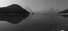Mighty (bichane) Tags: upper kananaskis lake panorama monochrome water mountains reflection trees forest smoky hazy alberta canada wide
