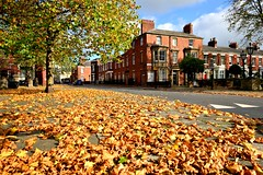 Autumn in Avenham, Preston (Tony Worrall) Tags: preston prestonian northwest north northern autumn color colour colours colourful shades shade sunlit trees natural nature leaves leaf avenham urban street road cover buy sell sale image stock item lancashire english uk gb british gold golden tree good ilobsterit instagram seasonal season covered nice beautiful beauty outside outdoors