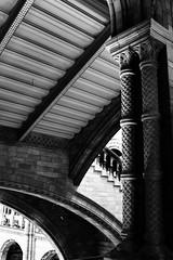 The Natural history museum of London (Viscountess _saunders) Tags: blackandwhitephotos blackandwhite london naturalhistory naturalhistorymuseum canon novice semipro architecture