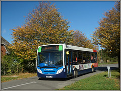 Autumnal D2 (Jason 87030) Tags: enviro d2 e200 golden leaves gown trees branches drop naked autumn autumnal weather blue sky sunny light october 2018 uk braunston spinney hill village northants northamptonshire midlands stagecoach 36217 kx60lja daventry dav buses red white orange shot sony alpha a6000 ilce nex publictransport route service