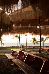 Food truck seating at Oahu's north shore. (RollingSwell) Tags: travel pineapple palmtrees peace oahu hawaii beach sunset fishtacos sunsetbeach