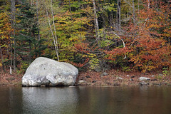 Chittenden, Vermont - 10/22/18 (myvreni) Tags: vermont autumn nature outdoors fall