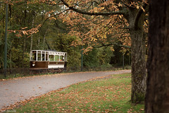 Autumn of a tram (WT_fan06) Tags: tramway manchester heaton park heritage historic history vintage old retro hull 96 nikon d3400 dslr photography beautiful composition aesthetic artsy artistic flickr 7dwf coth5 nature