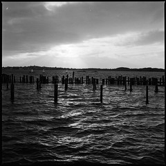 (albinboltphoto) Tags: hasselblad trix kodak 120 film filmisnotdead sweden gothenburg landscape