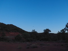 P6309900 (carriemoranphotos) Tags: arizona sedona redrocks trees travel sunrise sunset red usa roadtrip