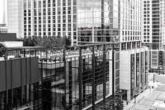 Nashville, Tennessee (Tasmanian58) Tags: nashville tennessee hotel omni nb bw loxia sony a7ii 35mm 235mm street architecture urban glass building
