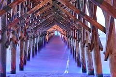 Blue Hour Under Folley Beach Pier