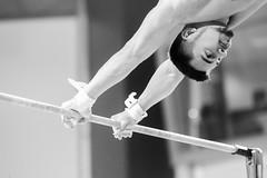 ginastica_doha_21out2018_treinomasc_abelardomendesjr-50 (Ministerio do Esporte) Tags: doha mundialdeginásticaartística qatar ginásticaartística