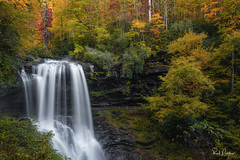 Dry Falls and WNC Color Report (Reid Northrup) Tags: rrs fallcolor nature autumn dryfalls fall foliage forest landscape longexposure longexposurewater nikon northcarolina reidnorthrup river rocks stream trees water waterfall