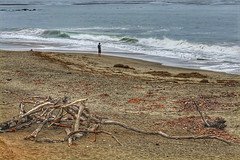 Sound of the sea (RainerSchuetz) Tags: geo:lat=3559312778 geo:lon=12112494167 geotagged ocean coast beach fishing angler highway1 california driftwood