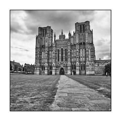 74/100x (neals pics) Tags: 100xthe2018edition 100x2018 image74100 building cathedral church religion faith wells uk path tourism landmark iconic history historic mono monochrome blackandwhite bw perspective my100x–squareformat