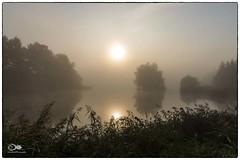 """""""Wenn sich die Morgennebel in die Lüfte erheben"""" (anton_zach) Tags: landschaft licht sonne sonnenaufgang natur nebel morgenlicht teich teichlandschaft grün gras baum bäume outdoor waldviertel wasser wald wolken nikon nikond800 himmel holz"""