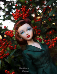 Berried (pure_embers) Tags: pure embers doll dolls uk pureembers photography laura england gene marshall ashton drake emberscarmen carmen icedcoffee portrait 40s 50s style classic elegant fashion melodom collector vintage pinup green perfectgift outfit suit berries