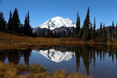 Upper Tipsoo Lake and Mount Rainier (jlcummins - Washington State) Tags: mountrainiernationalpark mountrainier chinookpass scenery tarn reflections