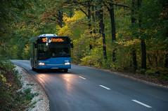 Solaris Urbino 10 (ac.Zadam) Tags: solaris urbino 10 nuv695 budapest hungary bkv public transport bus forest green autumn tree road headlights