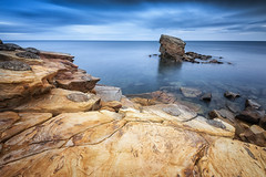 Charlies Garden (Pete Rowbottom, Wigan, UK) Tags: charliesgarden seastack sea ocean bluehour northumberland wideangle rock patterns landscape nature water whitleybay uk britain england coast longexposure clouds sky yellow blue colourful lines shapes peterowbottom photography 2018 outdoor nikond810 seatonsluice geotagged september cove