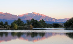 Collegiate Peaks Alpenglow (Patricia Henschen) Tags: sunrise morning mountains collegiatepeaks sawatch range reflection trees frantzlake swa statewildlifearea salida colorado mtprinceton mt antero 14ers alpenglow princeton upperarkansasvalley lake chalkcliffs autumn