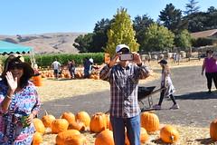 DSC_2550 (earthdog) Tags: 2018 needstags needstitle nikon d5600 nikond5600 18300mmf3563 fall autumn pumpkinpatch spinafarms farm
