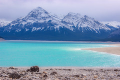 2 shades of icy blue (Alison Claire~) Tags: icefieldsparkway alberta canada north america provincial park national nature wild banff jasper outdoor outdoors landscape canon canoneos canoneos600d eos eos600d 600d rebelt3i lake blue snow ice mountain mountains mountainous stream water beach shore rocks rocky peak cloud cloudy