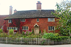The Cottage (ttelyob) Tags: standen cottage plants tree house nationaltrust picmonkey