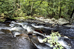 Tasso Creek Rapids Nine (Bill Smith1) Tags: billsmithsphotography heyfsc kodakportra400 muskoka nlp2018 olympusom2n zuikomc50f18lens believeinfilm