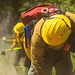 Shasta-Trinity National Forest Firefighters