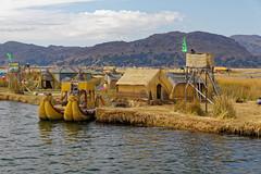 0G6A2045_DxO (Photos Vincent 2011 and beyond) Tags: pérou peru puno titicaca uros ile isla island lake lago lac bolivie lapaz
