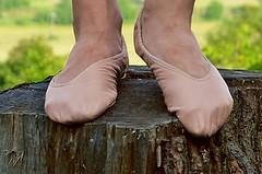 Na pařezu • On the stump (Merman cvičky) Tags: balletslippers ballettschläppchen ballet slipper ballerinas slippers schläppchen piškoty cvičky ballettschuhe ballettschuh
