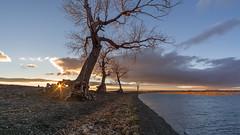 Утро на озере #maksileni, #Максименко_Леонид, #Leonid_Maksimenko, #своифото, #пейзаж, #природа, #утро, #рассвет, #дерево, #натура, #восход, #sunrise, #nature, #tree, #Landscape, #sun, #туман, #лучи, #foggy, #природа, #небо, #небоголубое, #сониальфа, #сони (ЛеонидМаксименко) Tags: bestofrussia uralinsta сониа6000 maksileni leonidmaksimenko natgeoru foggy nature небо природа натура дерево etonashural sun рассвет своифото sunrise natgeorussia сониальфа пейзаж восход sonyalpha небоголубое утро sonya6000 лучи tree landscape natgeoyourshot туман максименколеонид