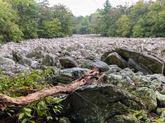 IMG_2925.jpg (Darren and Brad) Tags: hiking hawkmountainsanctuary hike hawkmountain appalachian riverofrockstrail pennsylvania