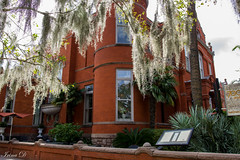 That Southern feel (Irina1010) Tags: tree spanishmoss building architecture savannah beautiful southern feel breezy october 2018 canon