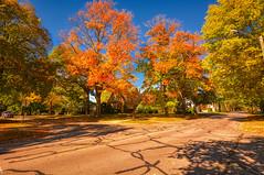 A Morris Street Scene in Autumn (kendoman26) Tags: hdr aurorahdr2019 nikon nikond7100 tokinaatx1228prodx tokina tokina1228 autumn autumncolors fall fallcolors morrisillinois