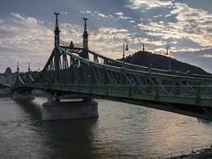 Liberty bridge - Budapest (Andreas Laimer) Tags: budapest ungheria ponte danubio fiume sera contrasto colori olympus omd em10 m2
