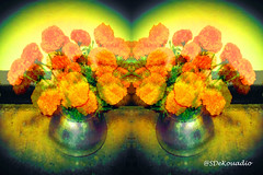 Marigolds (Stephenie DeKouadio) Tags: marigolds art artwork artistic hypnotique abstractflower abstract abstractart abstractflowers flowers flowersabstract flowerabstract colorful diadelosmuertos diasdelosmuertos diademuertos dayofthedead