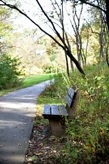 JJN_3411 (James J. Novotny) Tags: fall bench path arboretum morton mortonarboretum gardens garden flowers flower unlimitedphotos nikon nature d750