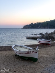 _MG_8591 (Montse capsadefils) Tags: mediterrani barca portbo calella palafrugell costabrava baixempordà
