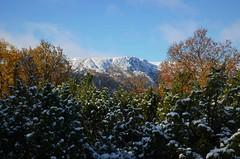 mot storklevan (KvikneFoto) Tags: høst autumn fall landskap natur snø snow tamron nikon