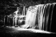 Hidden Falls Mono - Nerstrand Big Woods State Park, MN (j-rye) Tags: sonyalpha sonya7rm2 ilce7rm2 mirrorless rock creek stream nerstrandbigwoodsstatepark minnesota fall nature monochrome blackandwhite