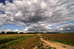 Clouds. (Bastiaan21busy) Tags: netherlands nederland paysbas niederlande nikond90 tokina1224mm dordrecht zuidholland biesbosch clouds dutchskies
