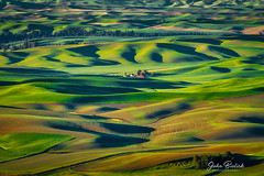 Palouse Farm Land_05 (John Bielick) Tags: 2018 america colfax copyrighted johnbielick northamerica palouse park photogtrekker statepark steptoebuttestatepark thestates theunitedstates us usa unitedstates unitedstatesofamerica washington whitmancounty farmland field rolling hill green farming scenic
