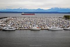 Elliott Bay Marina, Seattle. (Infinity & Beyond Photography) Tags: seattle boat sailboat marina marine water pugetsound ship tanker mountains wa washington masts yachts elliottbay smithcove