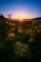 Final Movement (AirHaake) Tags: roosterrock statepark sunset sunstar sun columbiarivergorge oregon river atmosphere orange light