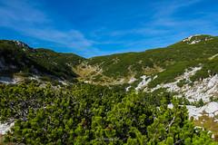 Čvrsnica mountain, Bosnia and Herzegovina (HimzoIsić) Tags: landscape mountain mountainside hill stone nature outdoor sky blue conifer plant