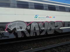 188 (en-ri) Tags: rayoz geloz gelo crew argento nero arrow 18 2018 train torino graffiti writing rosa