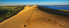 """Of all the books in the world, the best stories are found between the pages of a passport"" (Christian_from_Berlin) Tags: france europe vacation summer sun sunrise september dune dunedepyla dunedupilat wanderdüne sand yellow coast girande aquitaine travel camping pine pineforest"