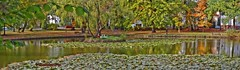 Panorama Schwanenteich Bad Lausick (kh goldphoto) Tags: badlausick kurviertel kurstadt rehakur sachsen schwanenteich herbstlaub herbstfeuer herbstfarben herbst indiansummer seerosen spiegelung teich