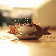Autumn Vibes | The Lightbulb Project • Week #2 (oykuavcuphoto) Tags: coffeelove splashing splash autumnvibes warm cozy fall autumn leaf leaves coffee 50mm canon5dmarkii musesyndrome oykuavcuphoto