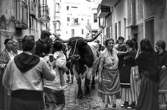 Fiesta de los Origenes. (angelalonso4) Tags: white black negro blanco bw santcarlesdelarapita canon