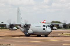 Lockheed C-130K Hercules - 8T-CA - Austrian Air Force (TyAviationImages.co.uk) Tags: lockheed c130k hercules 8tca austrian air force